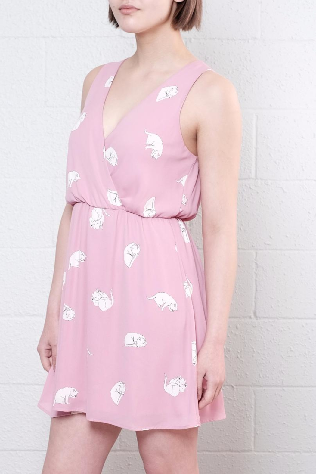 Everly Rowena Cat Dress from Vancouver by 8th & Main — Shoptiques