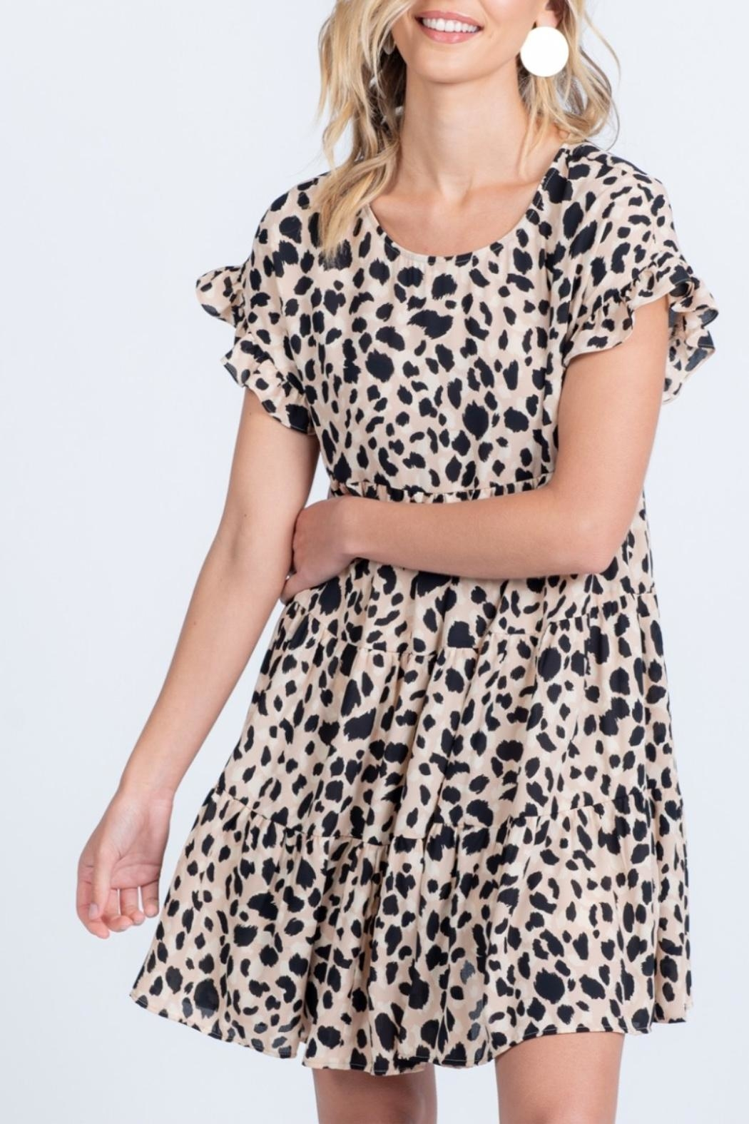 Everly Ruffle Printed Dress - Front Full Image