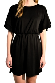 Everly Ruffle Sleeve Dress - Front cropped