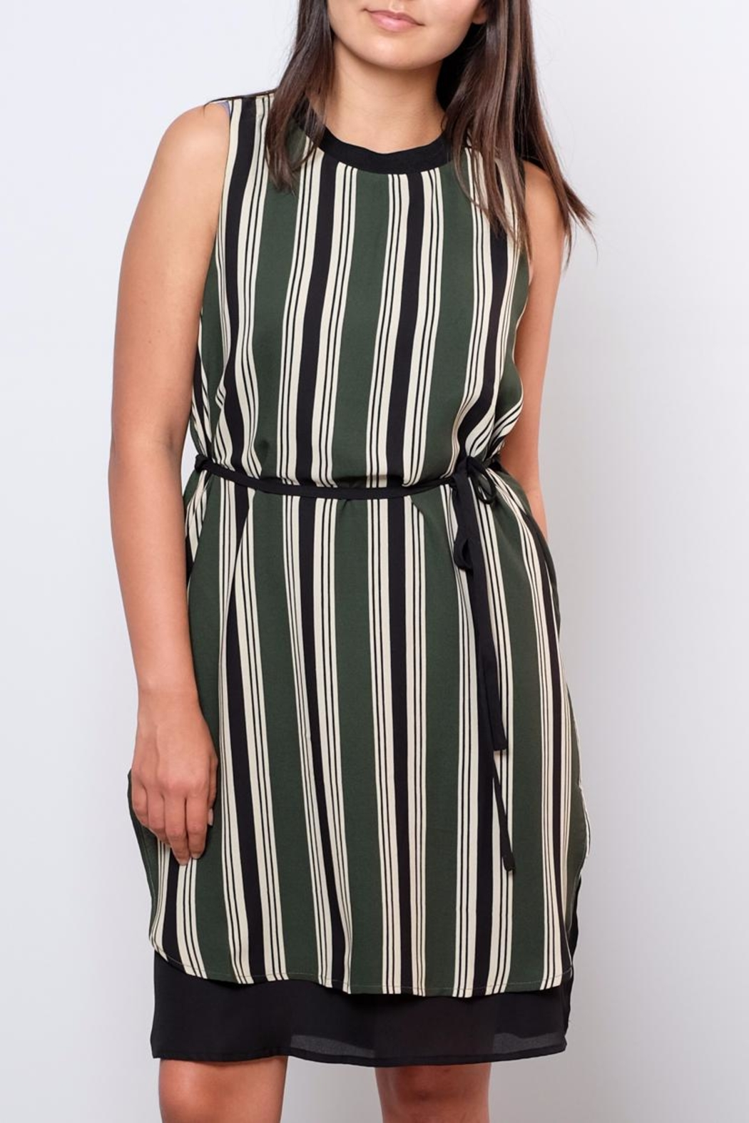 Everly Striped Shift Dress - Front Full Image