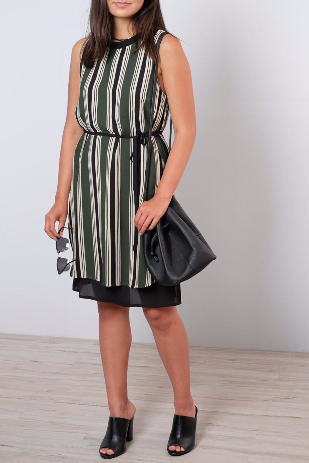 Everly Striped Shift Dress - Front Cropped Image