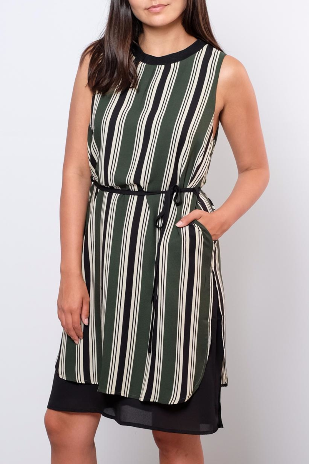 Everly Striped Shift Dress - Side Cropped Image