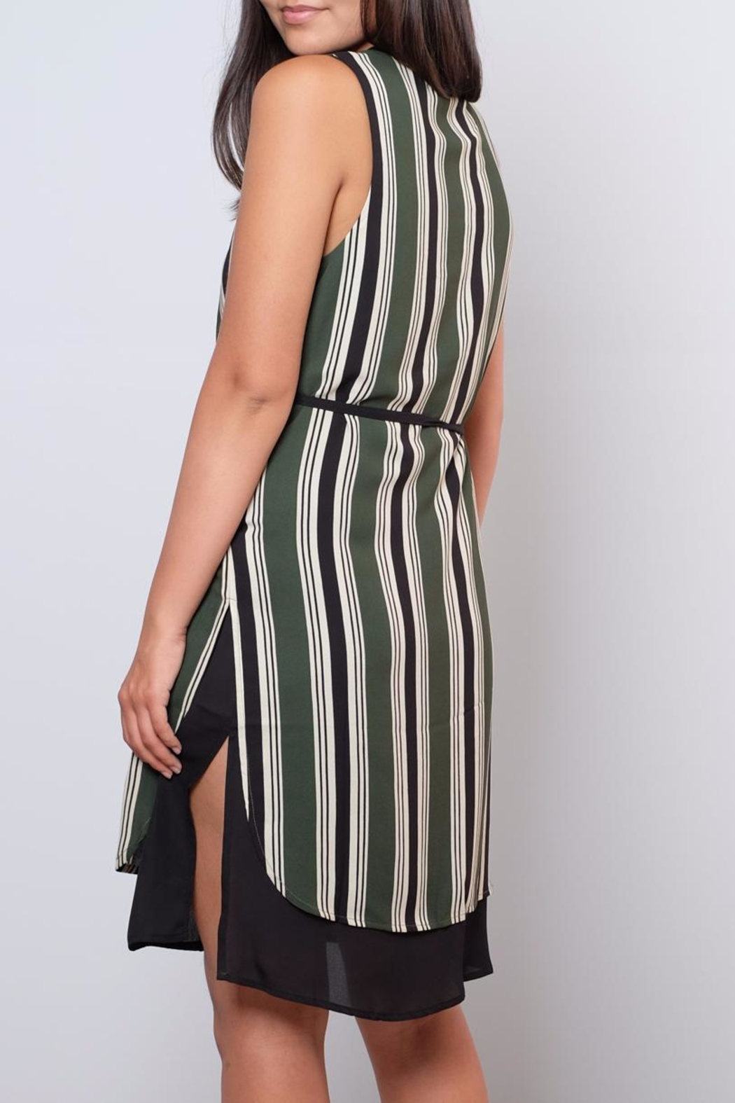 Everly Striped Shift Dress - Back Cropped Image