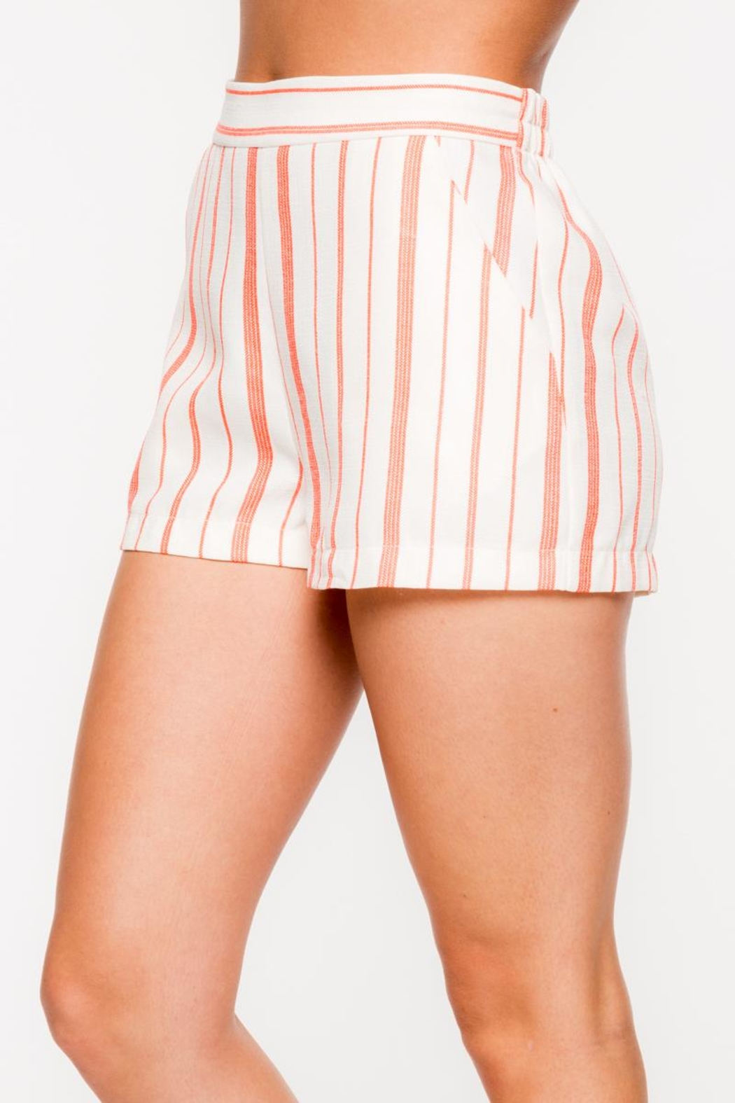 Everly Vertical Striped Shorts - Front Full Image
