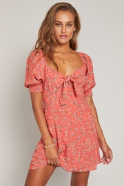 Lost + Wander Everyday Adventures Dress - Front full body