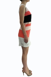 Eyedoll Colorblock Dress - Front full body