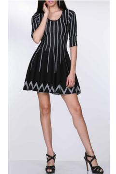 Shoptiques Product: Fitted Swing Dress
