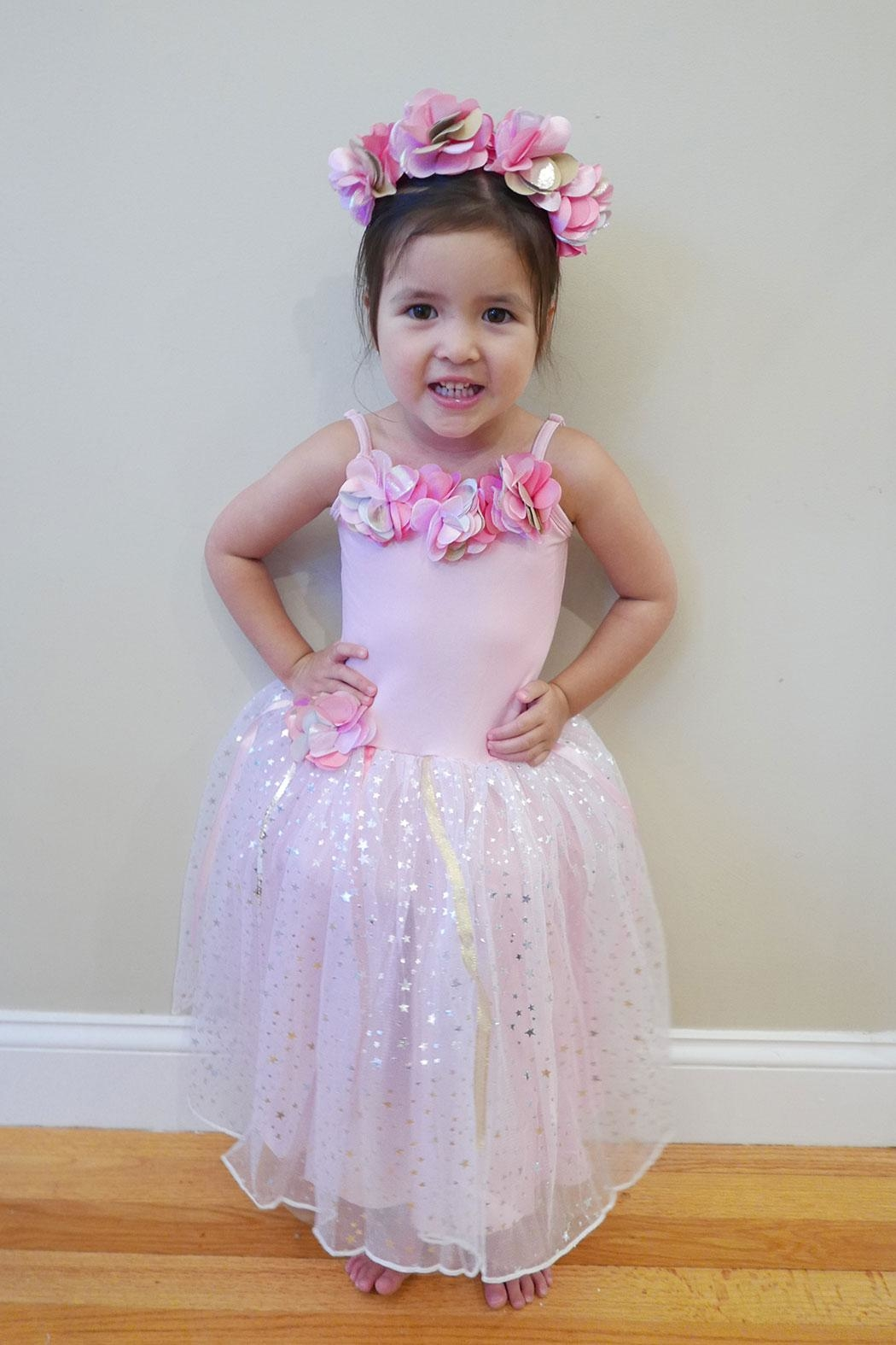 Pink Poppy Fairy Dress W/headband - Front Cropped Image