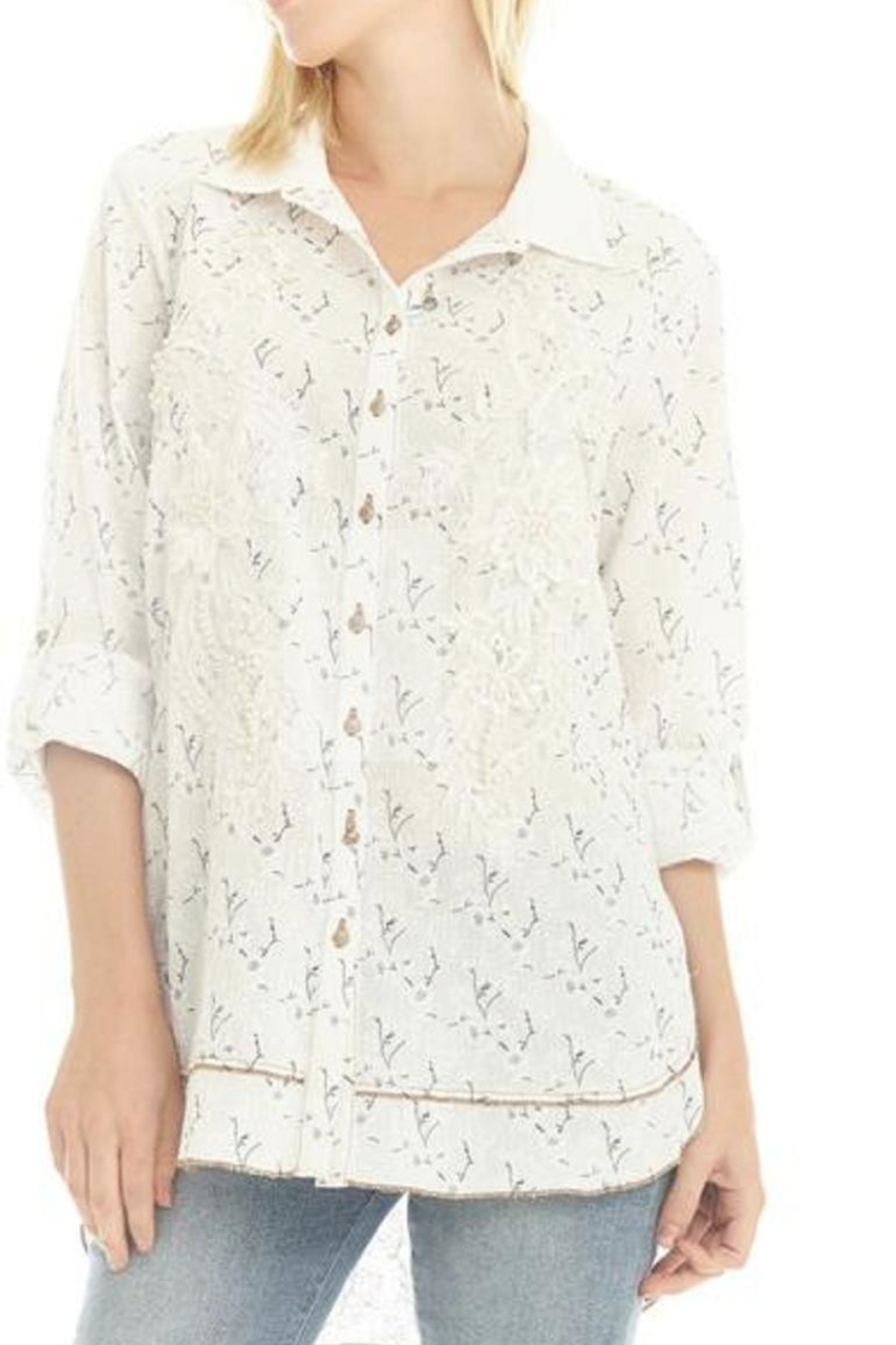 Aratta Fairy Veil Shirt - Front Cropped Image
