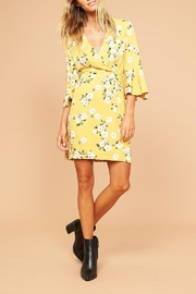 Mink Pink Fall Floral Mini - Product Mini Image