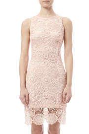 fashion on earth Crochet Overlay Dress - Side cropped