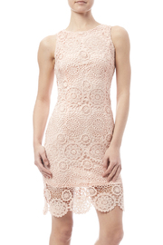 fashion on earth Crochet Overlay Dress - Product Mini Image