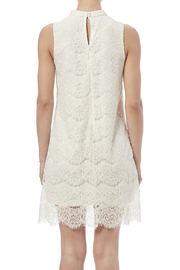 fashion on earth Lace Shift Dress - Back cropped