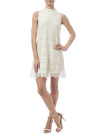 fashion on earth Lace Shift Dress - Front full body
