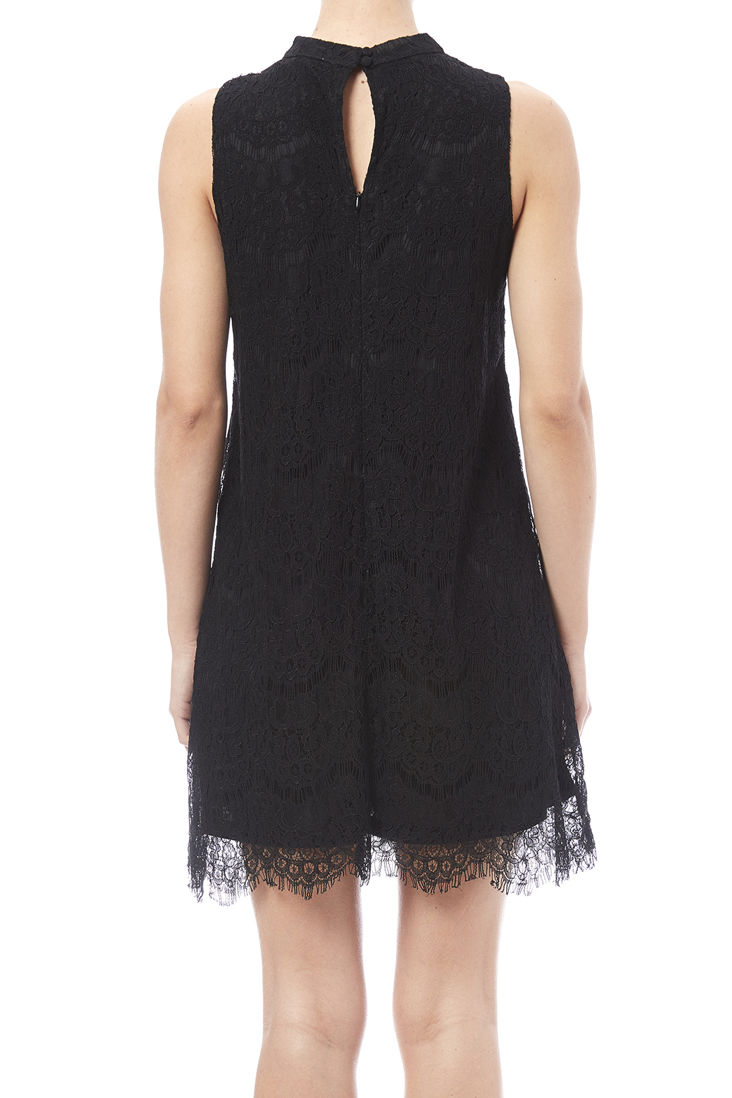 fashion on earth Lace Shift Dress - Back Cropped Image