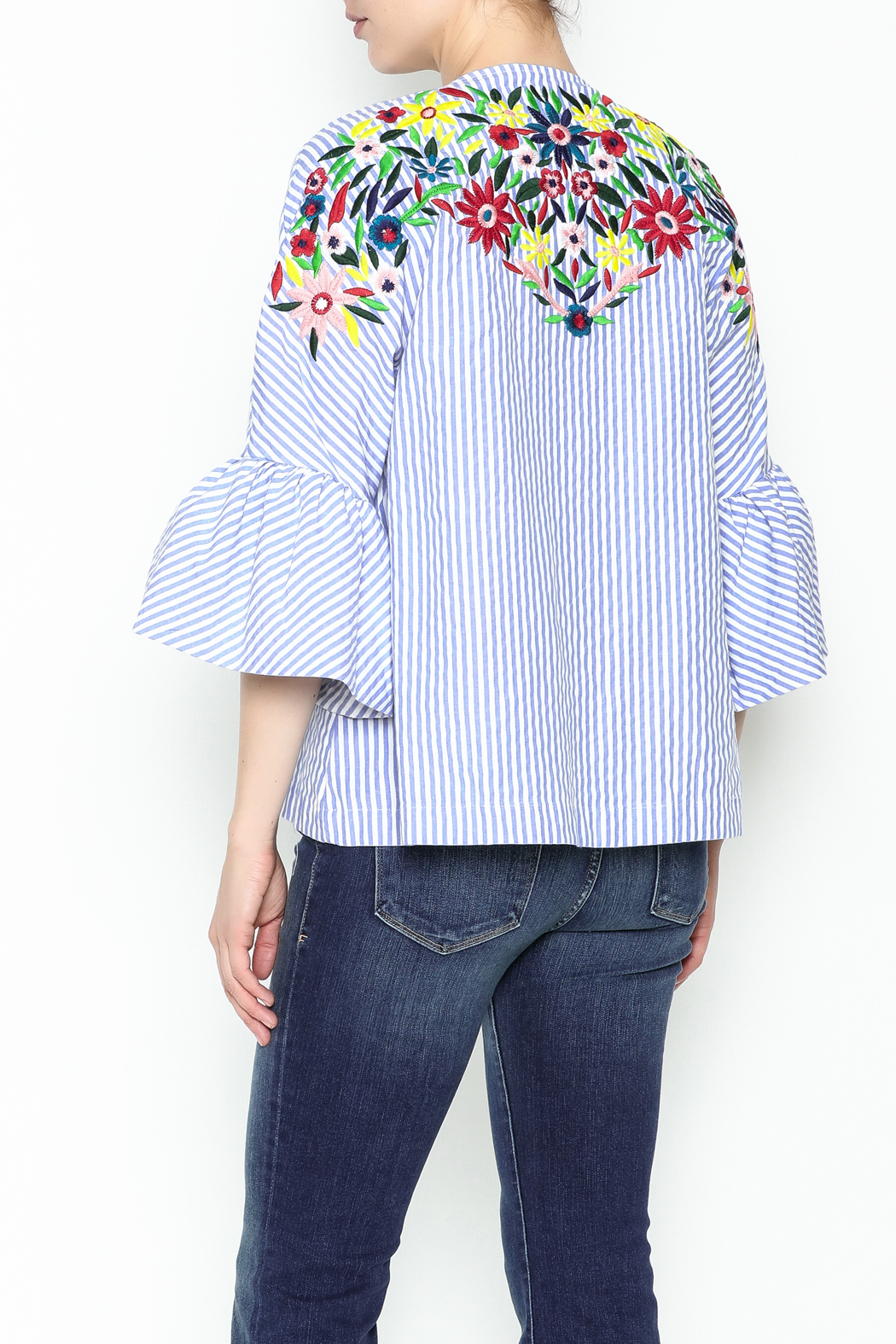 Fashion Pickle Ferera Embroidered Blouse - Back Cropped Image