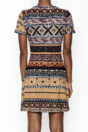 Fashion Pickle Multicolor Sweater Dress - Back cropped