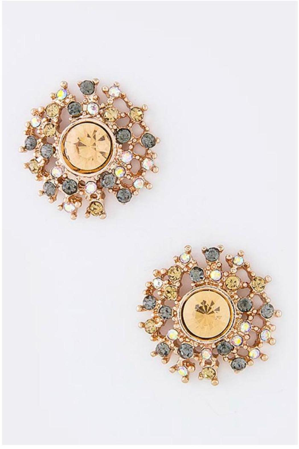 Fashion Bella Round Crystal Ear Studs - Front Cropped Image