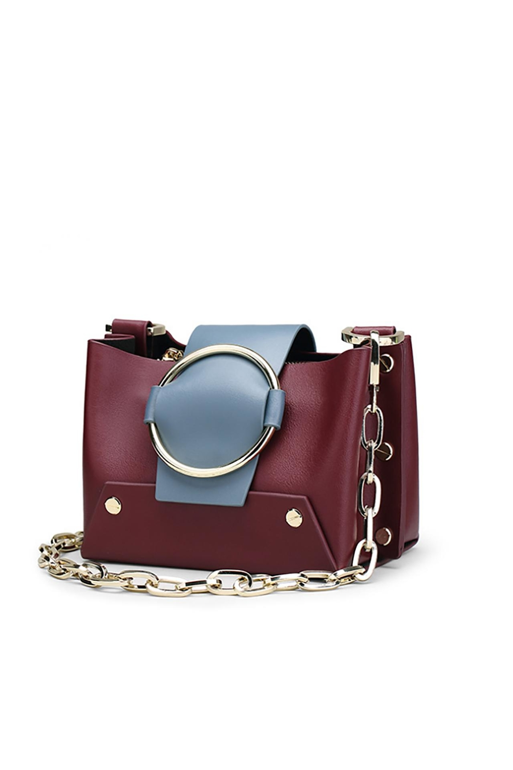 Fashion Pickle Anaita Burgundy Bag - Main Image