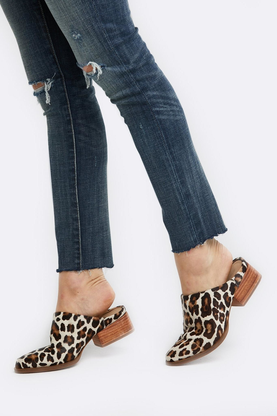 FashionAble Leopard Mules - Front Full Image