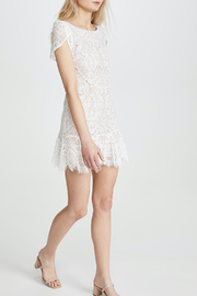 BB Dakota  Fast Lace Environment Dress - Product Mini Image