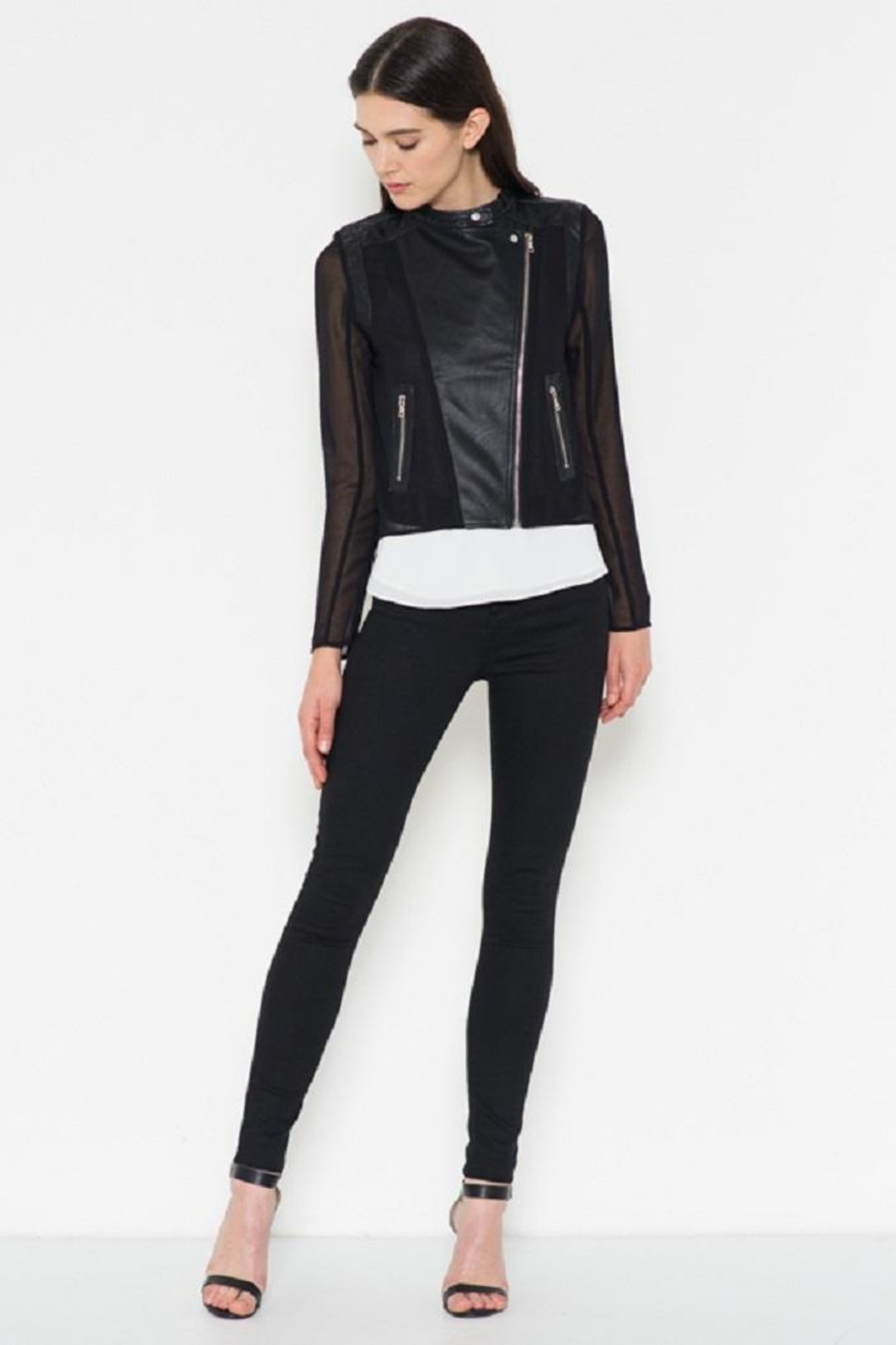 Fate Chiffon Leather Jacket - Back Cropped Image