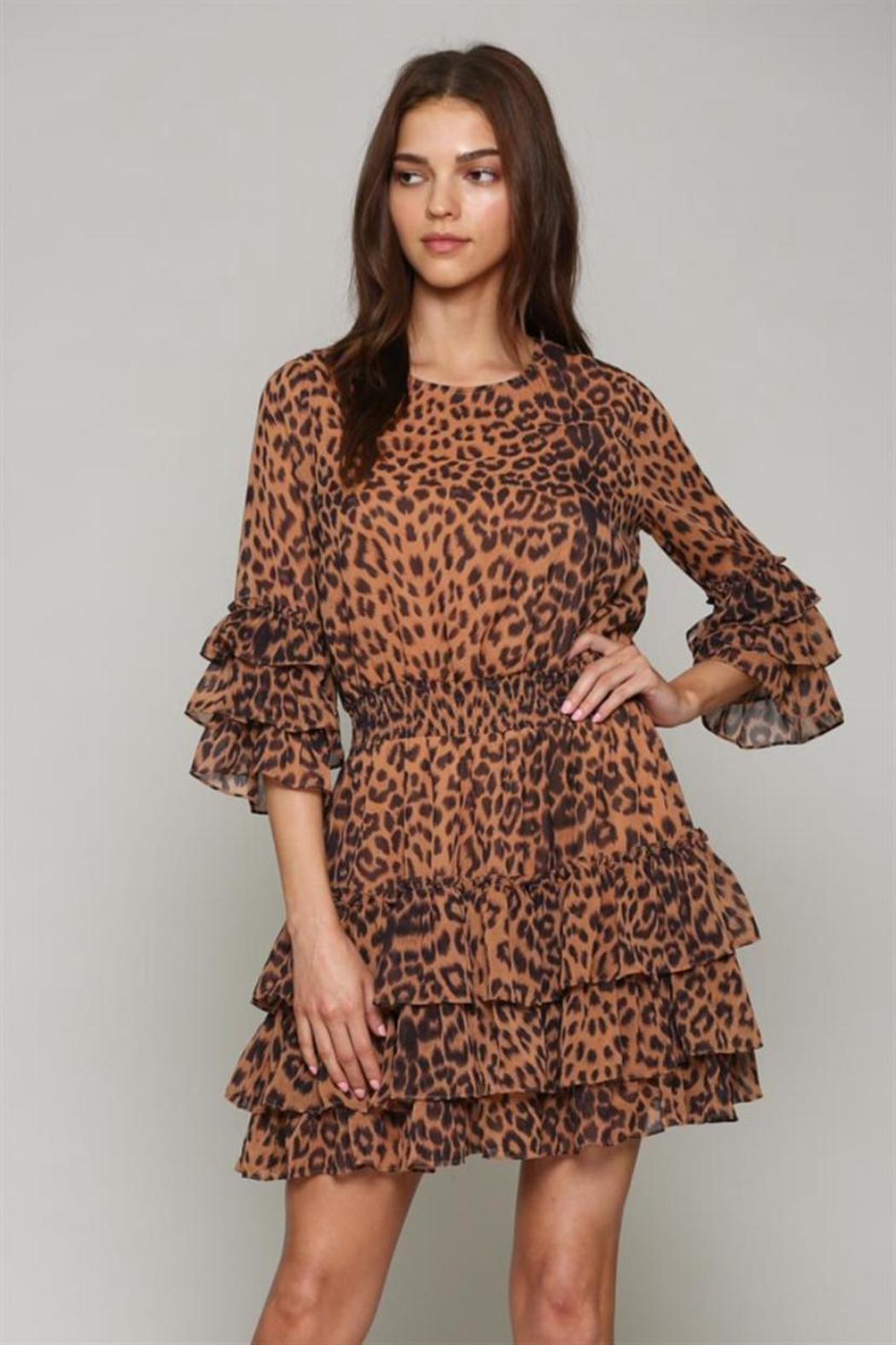 Fate Leopard Layered Dress - Main Image