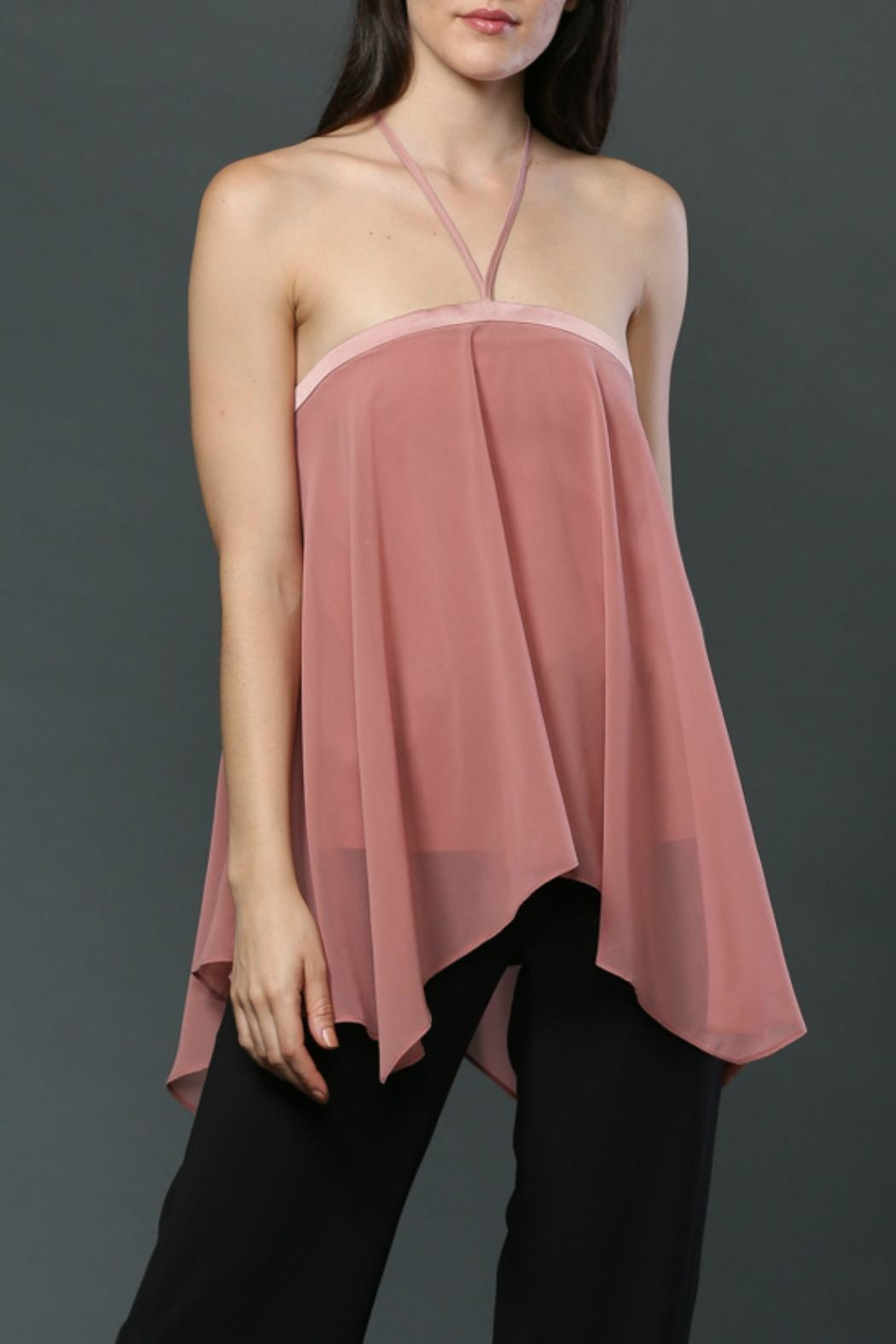 FATE by LFD Halter Neck-Tie Top - Front Full Image