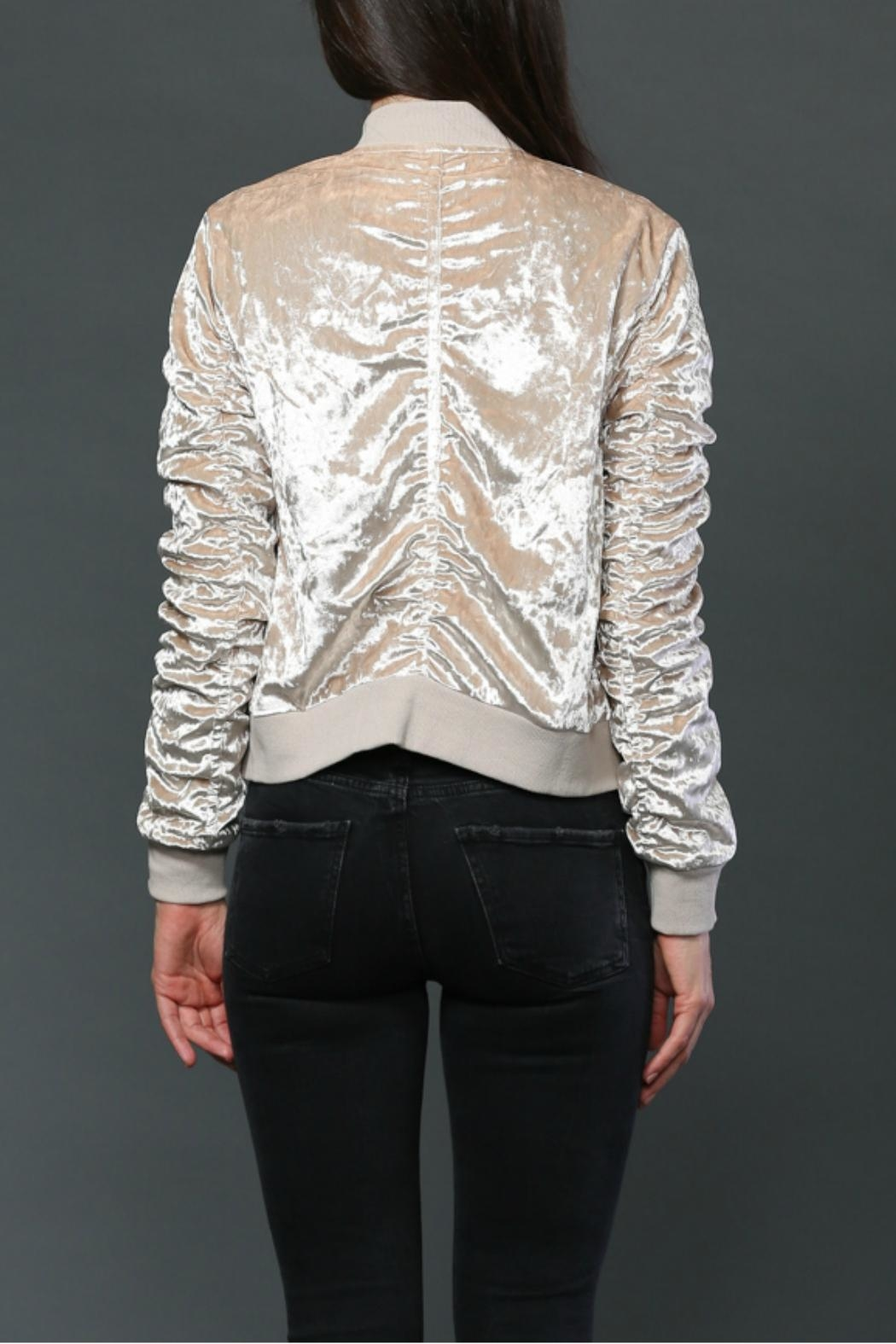 FATE by LFD Velvet Bomber Jacket - Back Cropped Image