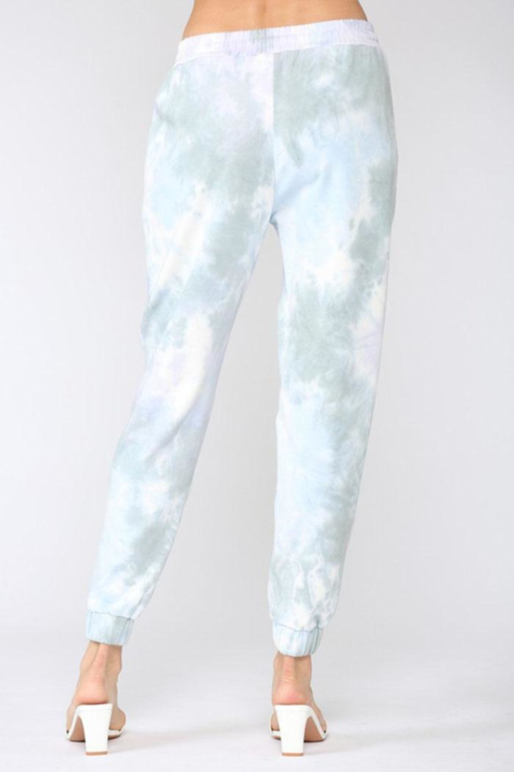 Fate Inc. Tie Dye Jogger - Back Cropped Image