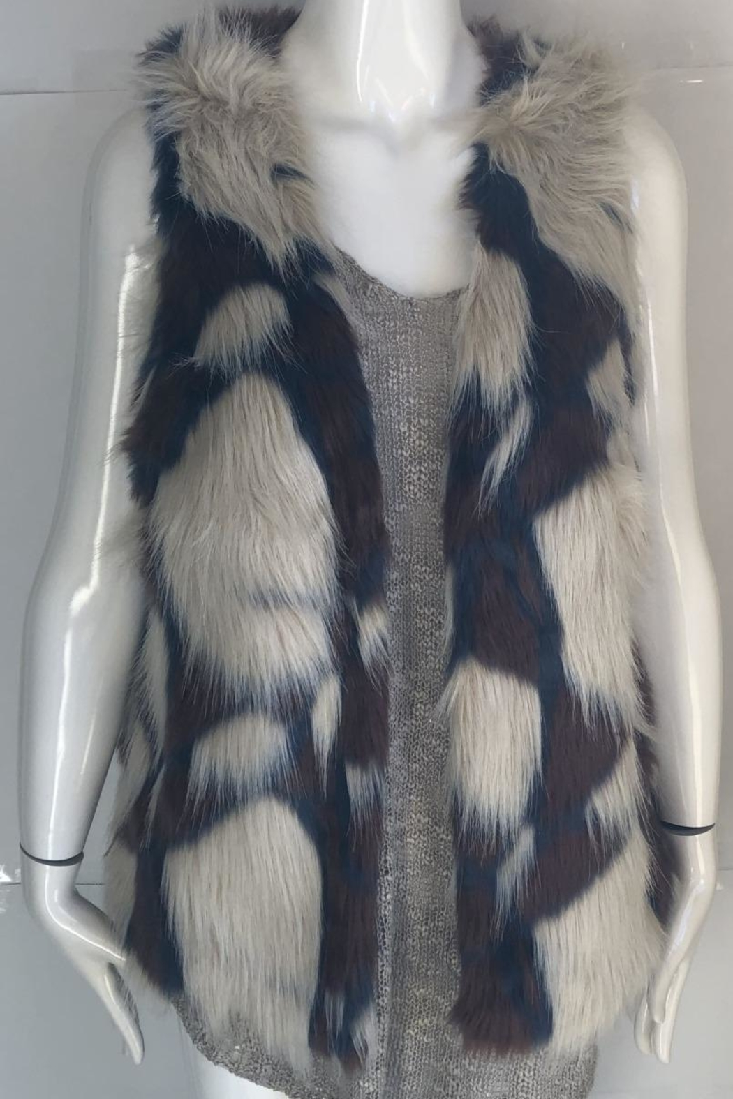 Yahada Faux-Fur Animal-Print Vest - Front Cropped Image