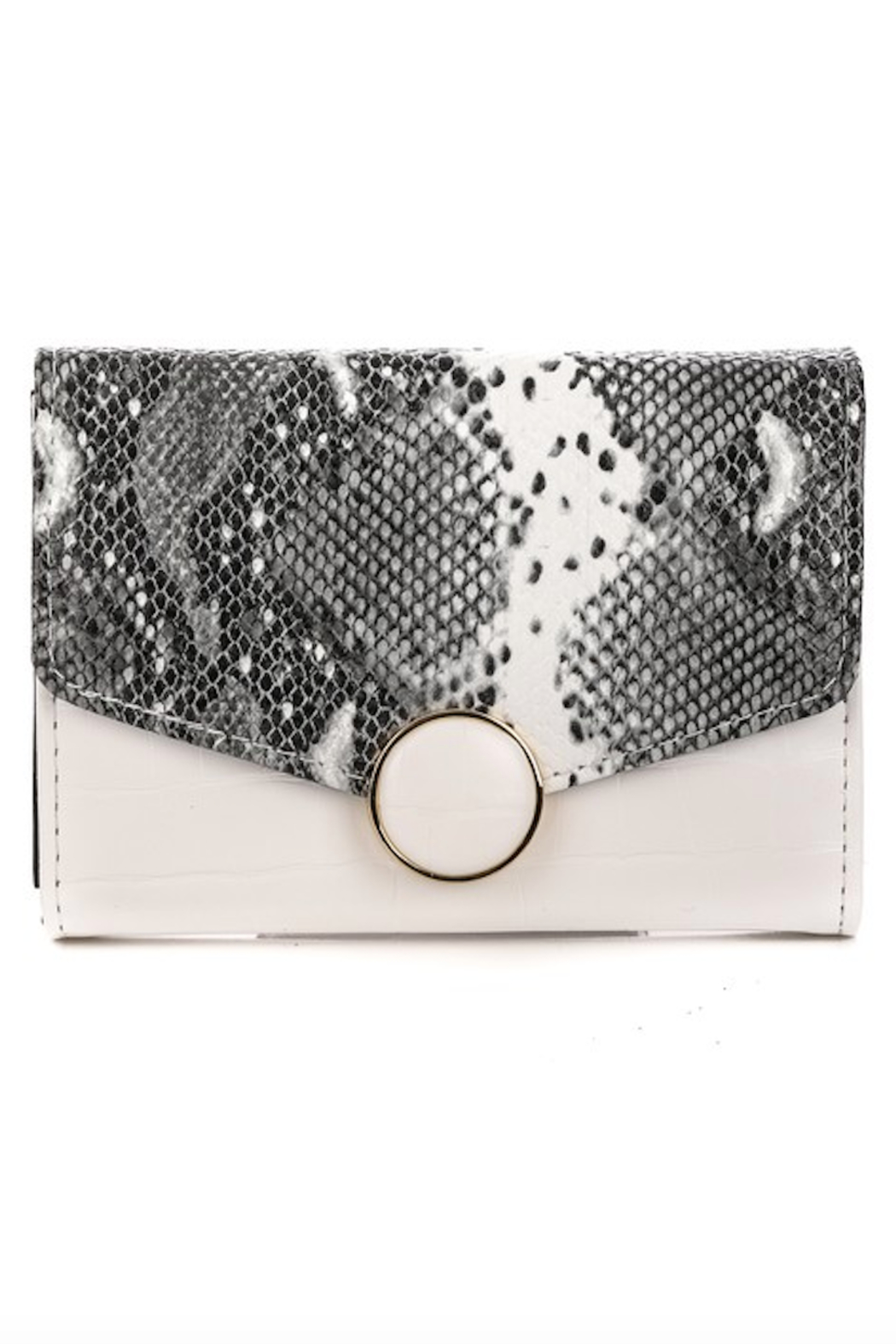 Anarchy Street Faux Snakeskin Wallet - Front Cropped Image