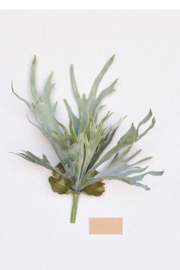 Homart Faux Staghorn Fern - Product Mini Image