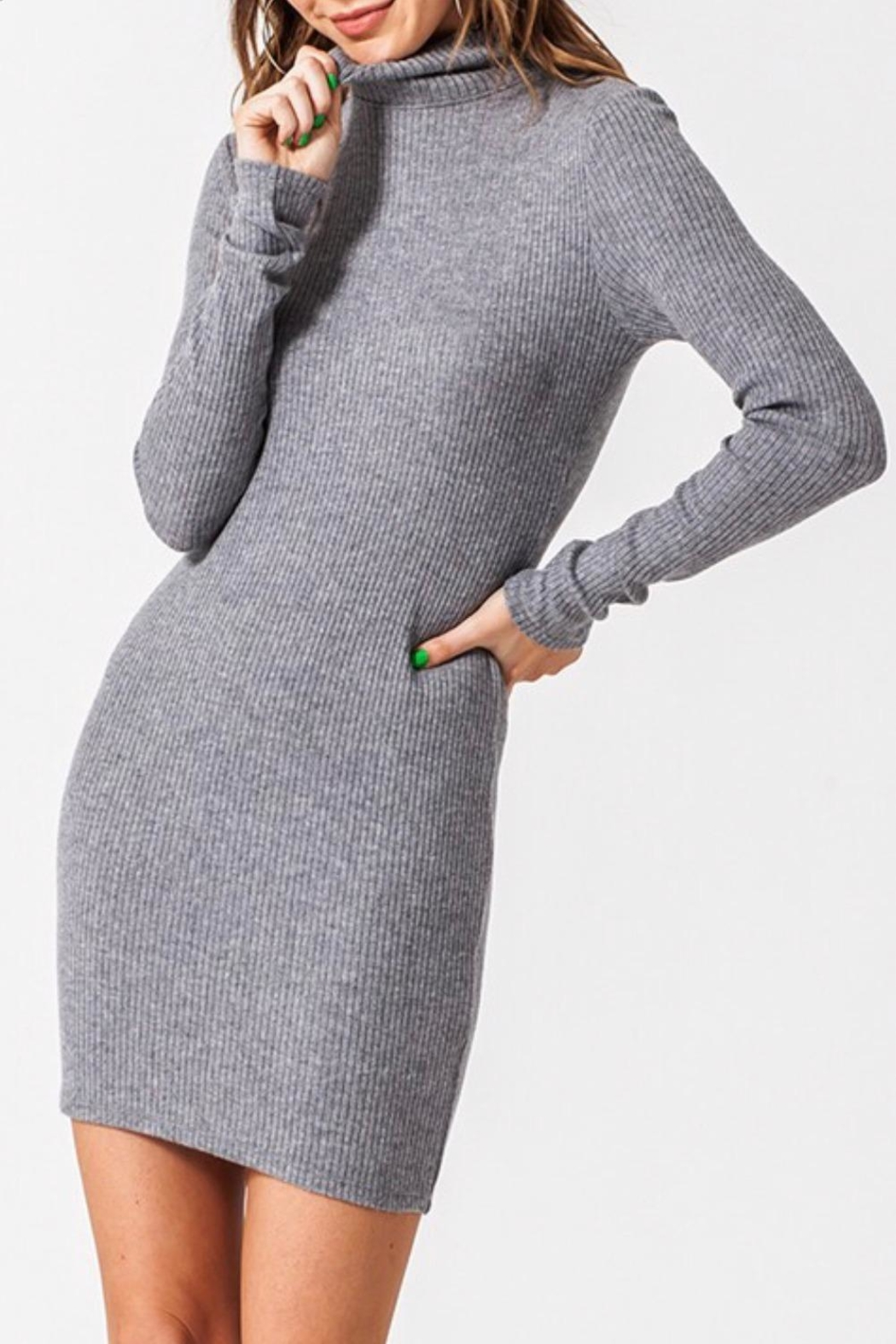 Favlux Bodycon Mini Dress - Front Cropped Image