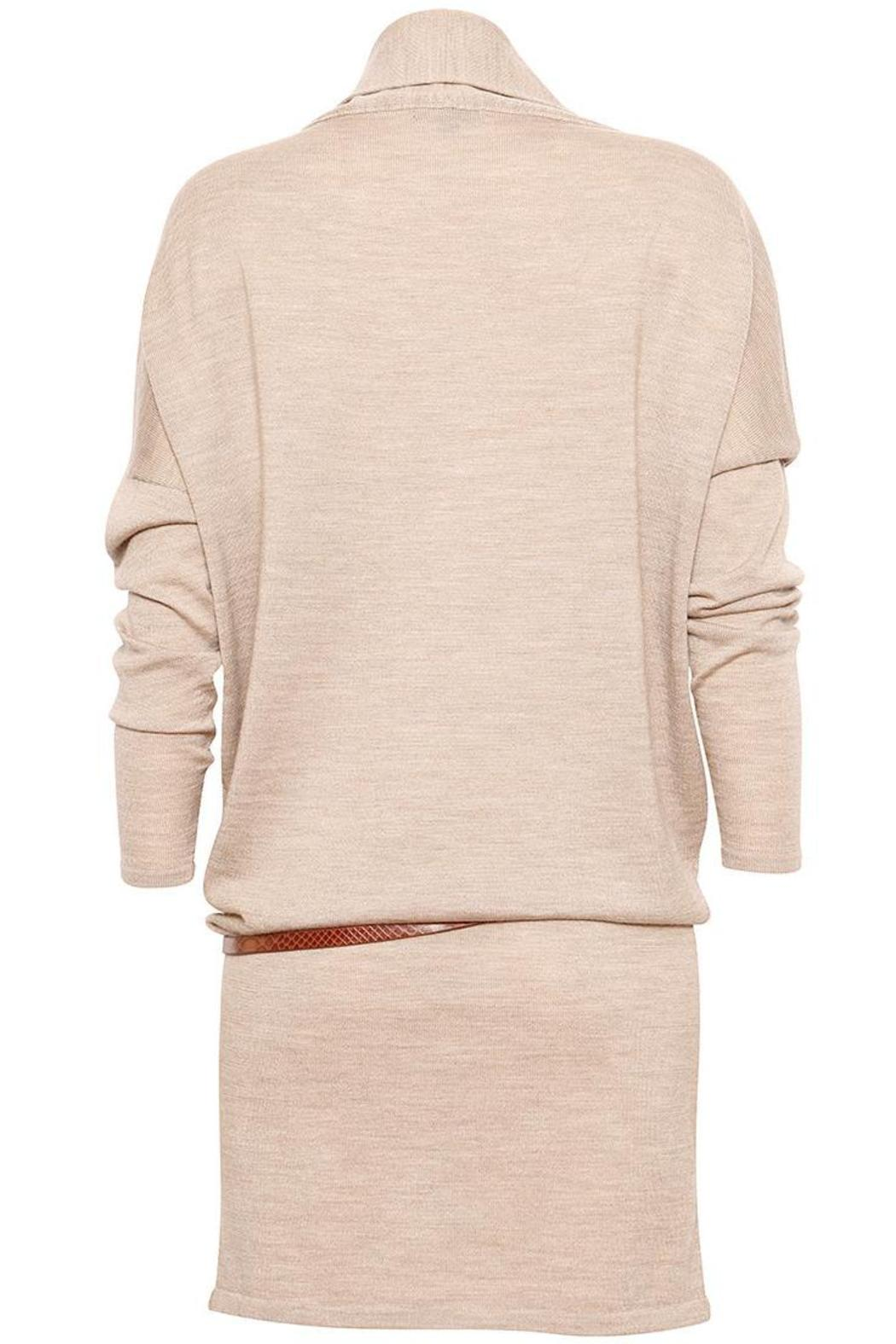 EMU 3-In-1 Sweater Dress - Back Cropped Image