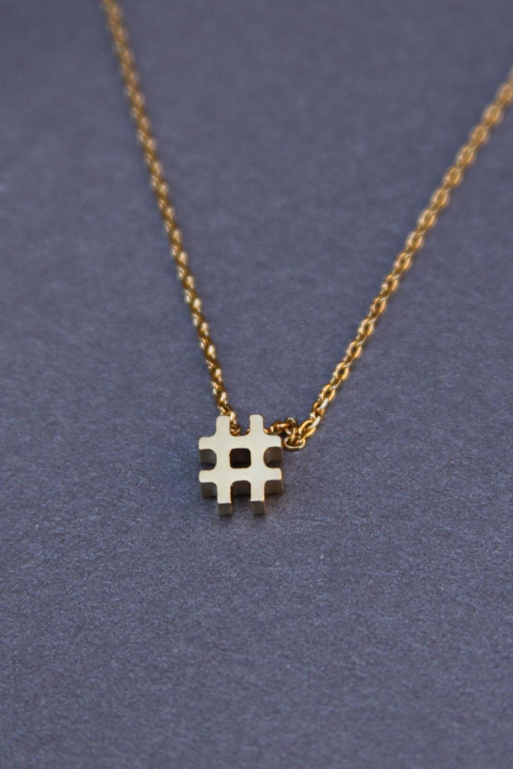 Reija Eden Jewelry Hashtag Necklace - Front Cropped Image