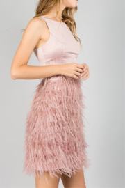 Minuet Feather Bottom Dress - Side cropped