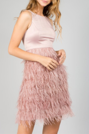 Minuet Feather Bottom Dress - Product Mini Image