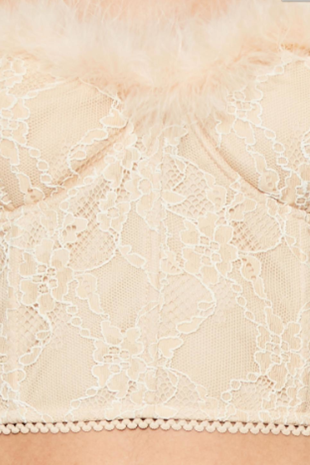 TIMELESS Feather Lace Top - Back Cropped Image