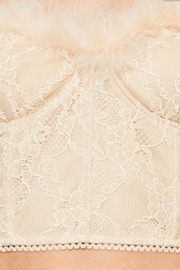 TIMELESS Feather Lace Top - Back cropped