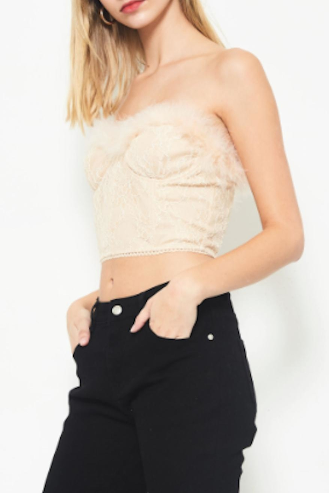 TIMELESS Feather Lace Top - Front Full Image