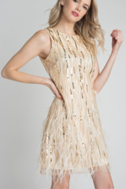 Minuet Feather & Sequin Dress - Product Mini Image