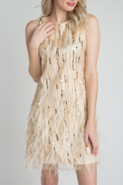 Minuet Feather & Sequin Dress - Front full body