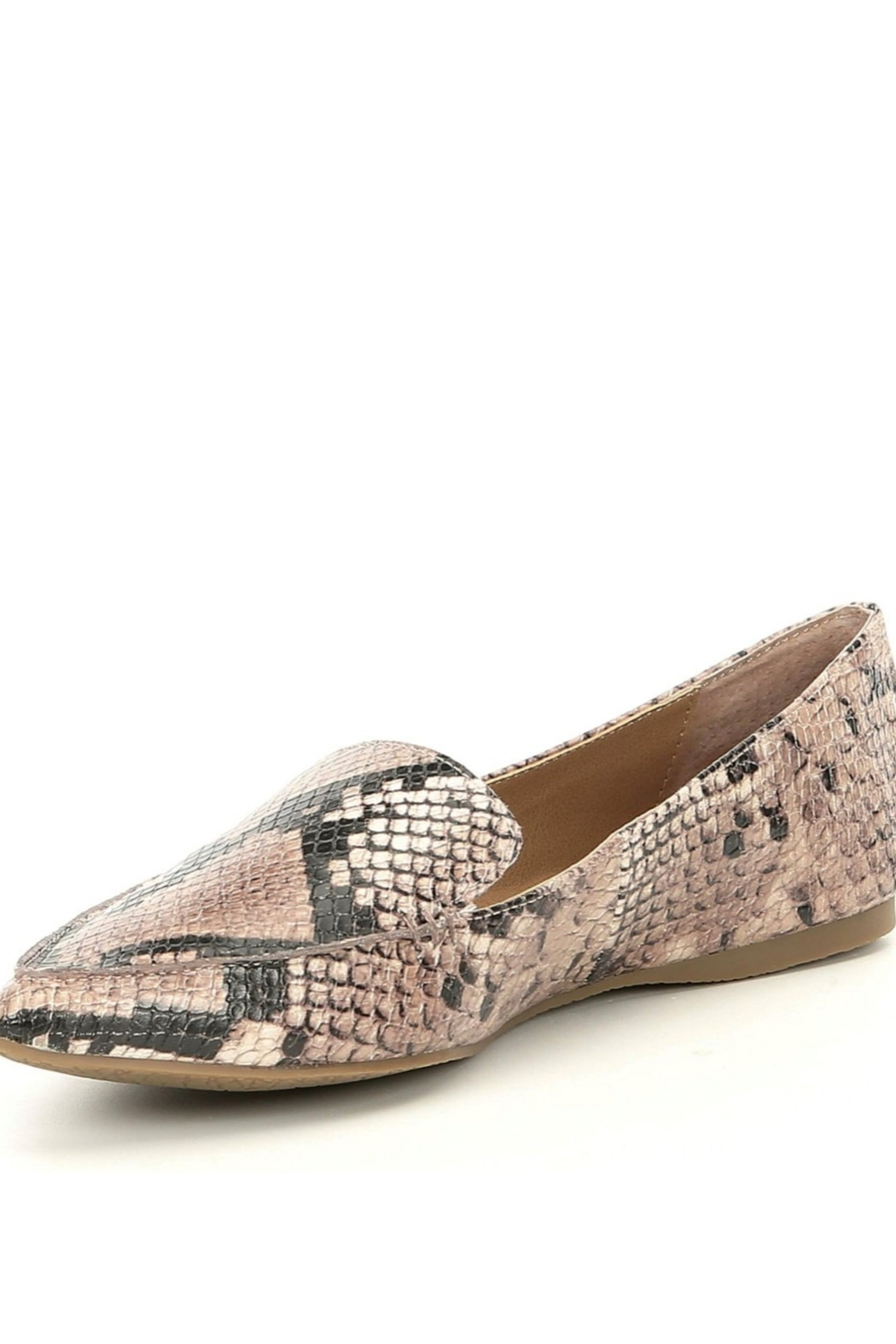 Steve Madden Feather Snake Flat - Front Cropped Image