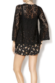 Gina Louise Lace Bell Sleeve Top - Back cropped