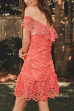 Saylor Fern Eyelet Dress - Alternate List Image