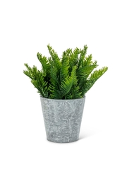 Abbott Collection Fern Faux Plant - Product Mini Image