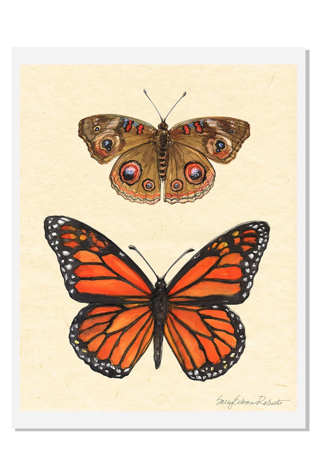 Sally Eckman Roberts Field Guide Butterfly2 - Main Image