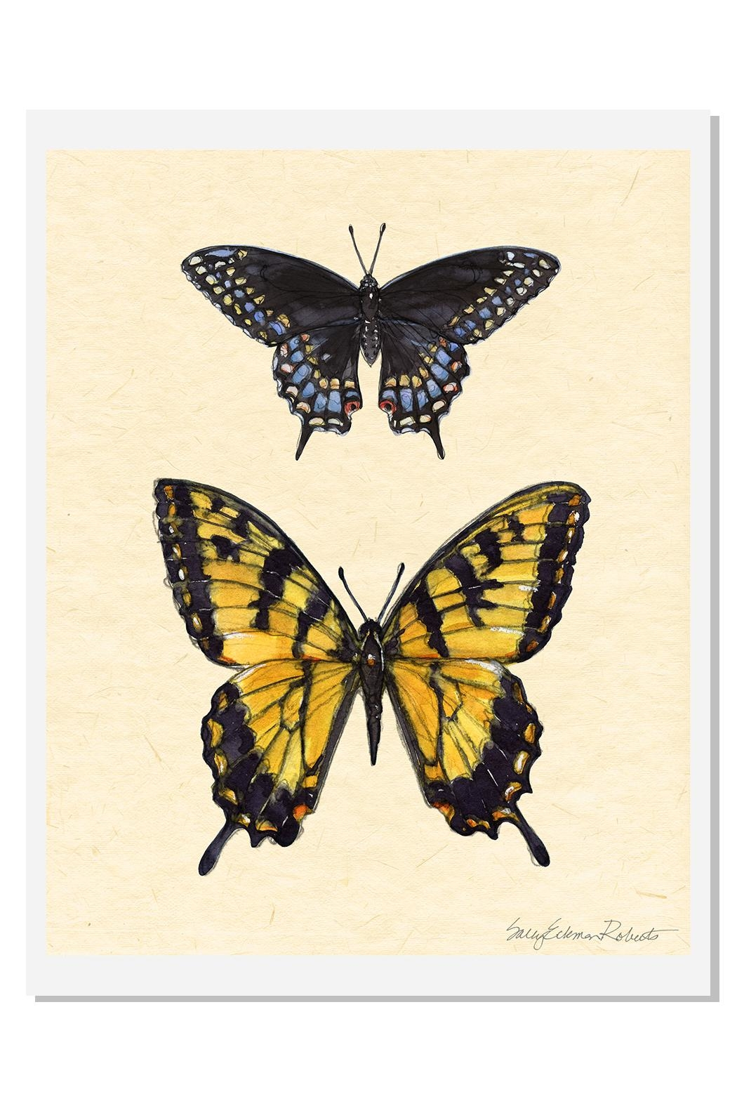Sally Eckman Roberts Field Guide Butterfly3 - Main Image