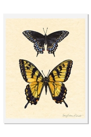 Sally Eckman Roberts Field Guide Butterfly3 - Product Mini Image